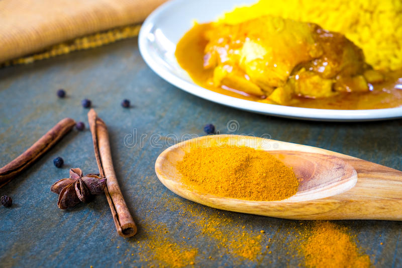 在做鸡的杓子的香料Biryani 免版税库存图片
