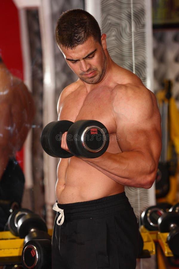 在健身房的肌肉人锻炼 库存照片