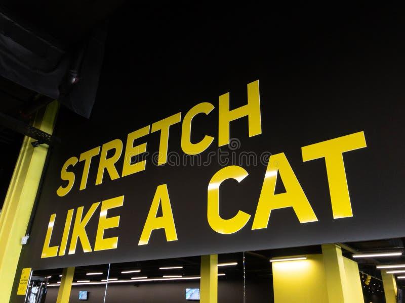在健身房的诱导文本体育男人和妇女的能训练更加坚硬 库存图片
