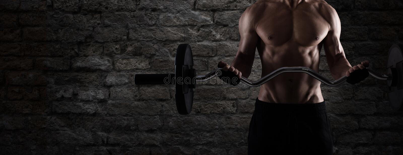 在健身房的运动人训练二头肌 使用作为横幅 免版税库存照片