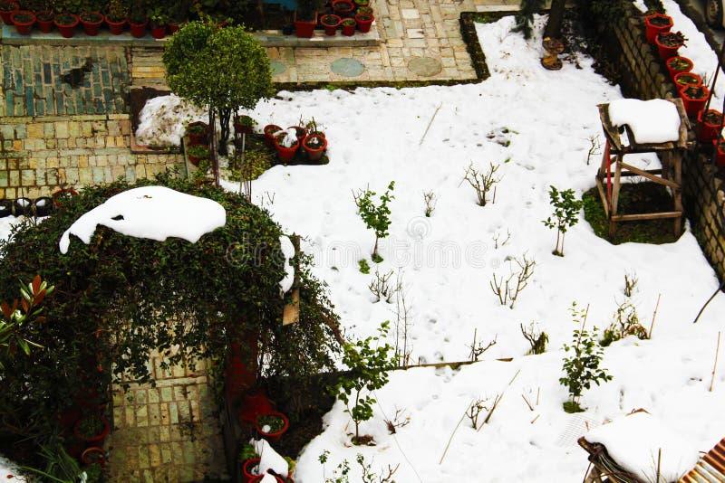 在充分家庭菜园的沈默冬天风景白雪 免版税图库摄影