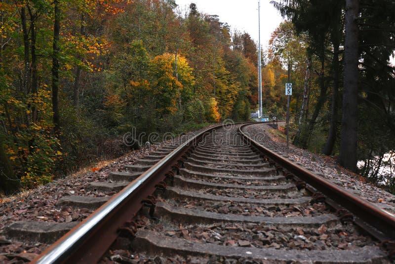 在充满活力色的树旁边的铁轨在秋天 库存图片