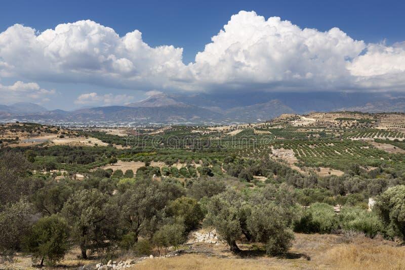 在克利特,希腊海岛上的messara平原  免版税库存图片