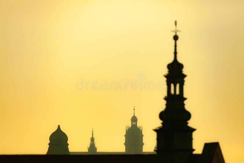在克拉科夫上屋顶  库存照片