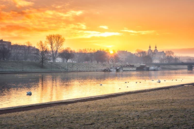 在克拉科夫老镇和维斯瓦河,波兰的金黄日出 库存照片