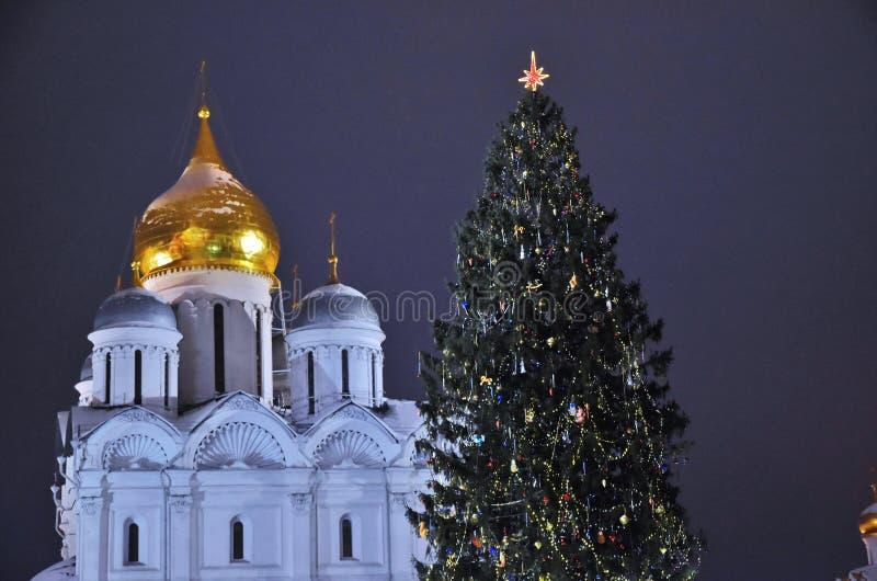 在克里姆林宫Sobornaya广场的圣诞节和新年2019年树  免版税库存照片