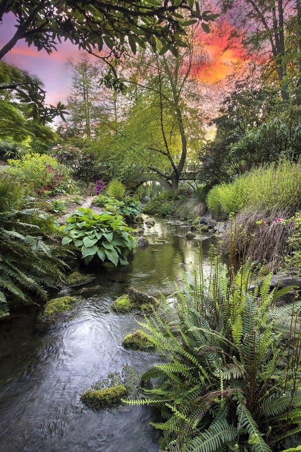 在克里斯特尔里弗杜鹃花庭院日落的小河 图库摄影