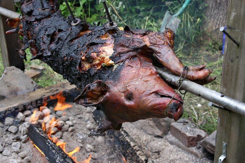 在全部猪的烧烤的火 库存照片