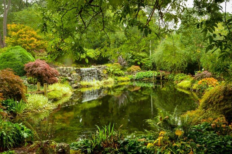 在公园中间的小池塘 图库摄影