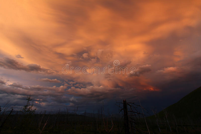 Download 在公园微明的冰川国民 库存图片. 图片 包括有 积云, 结构树, 奇怪, 冰川, 晒裂, 本质, 粉红色 - 22355083