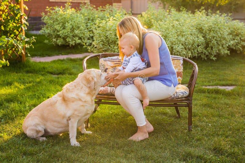 在公园照顾拿着小儿子和使用与拉布拉多狗 图库摄影