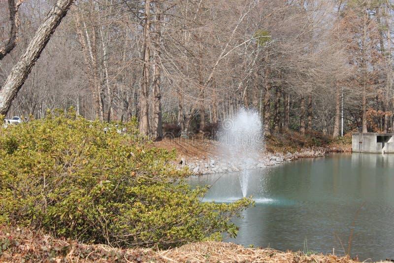在公园的小美丽的瀑布 图库摄影