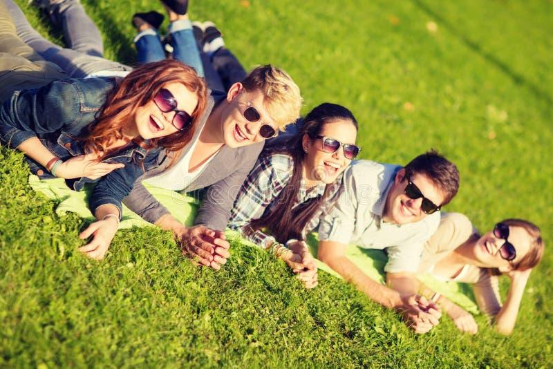 在公园的小组学生或少年 免版税库存照片