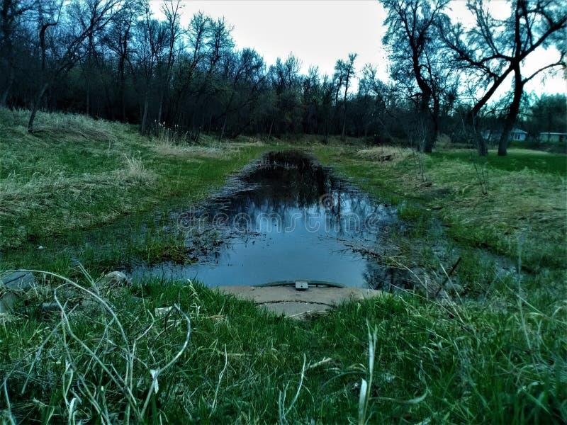 在公园的排水设备管子 库存照片