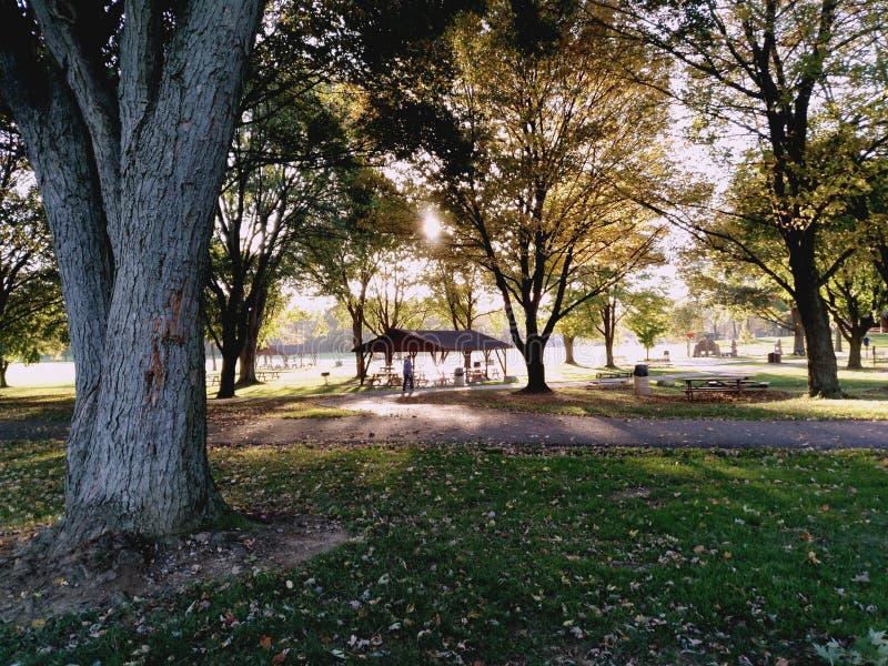 在公园的日落 免版税库存图片