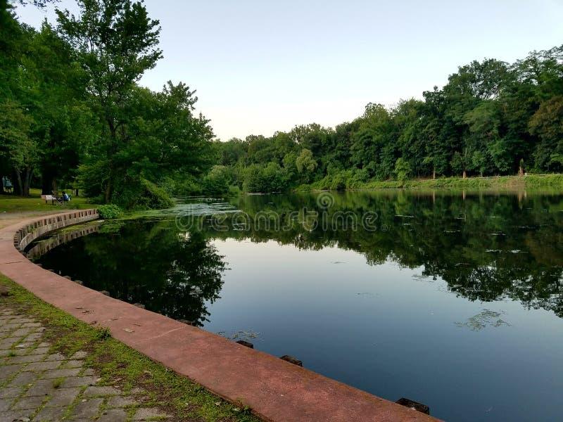 在公园的日 免版税库存图片