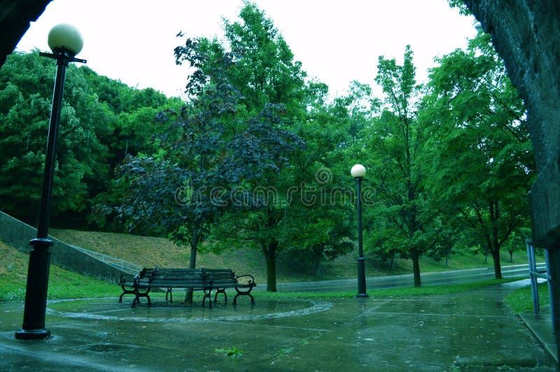 在公园的湿天 免版税库存照片