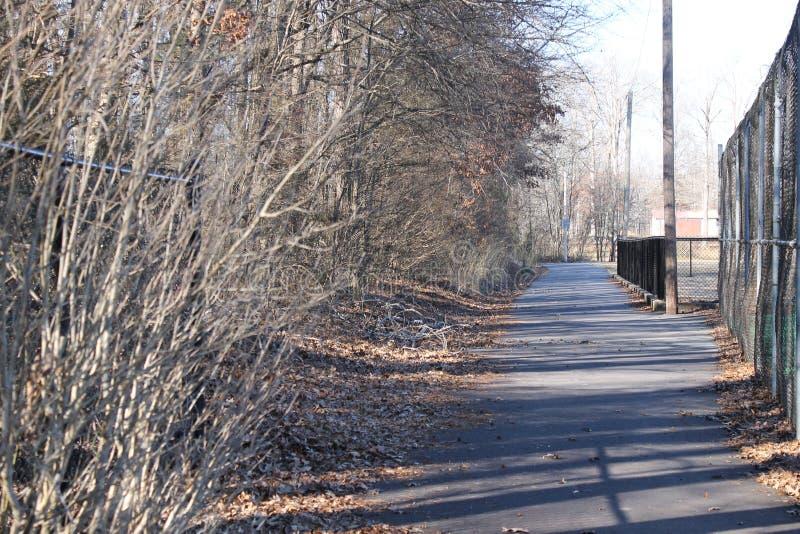 在公园的路和边路晴天 库存图片