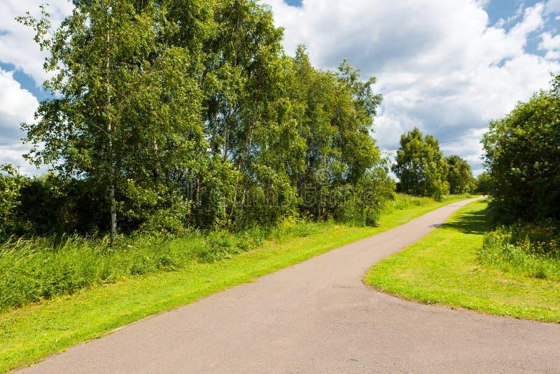 在公园的路径 免版税库存图片