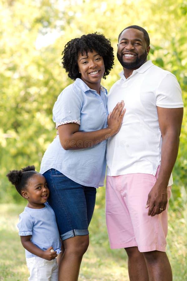在公园的非裔美国人的家庭有他们的女儿的 免版税库存图片