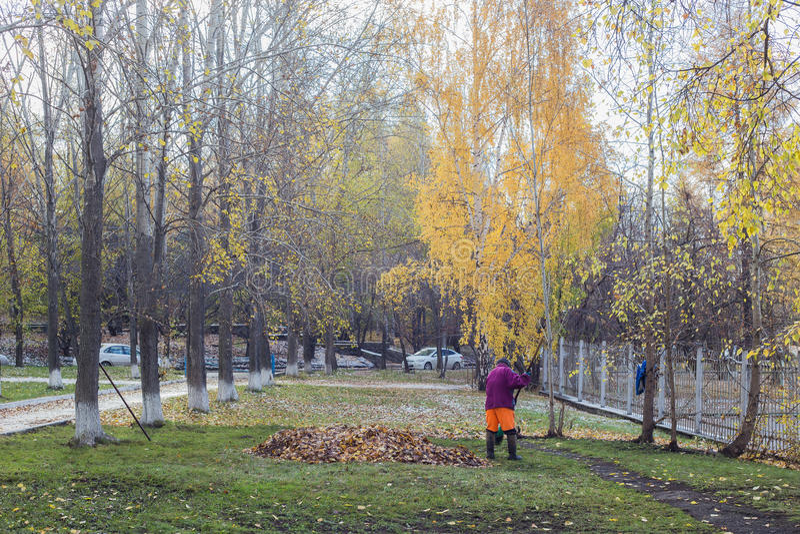在公园管理员的秋天天清洗叶子 库存图片