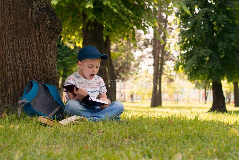 在公园读书的男孩 免版税库存照片