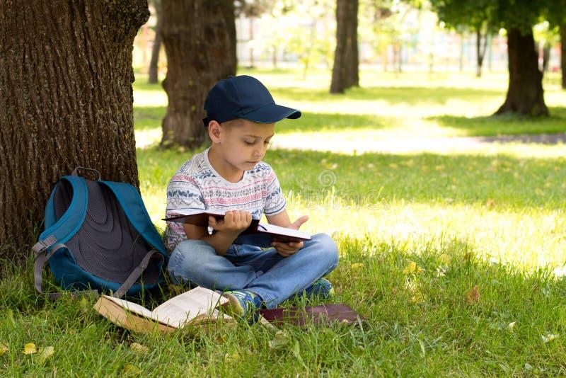 在公园读书的男孩 免版税图库摄影