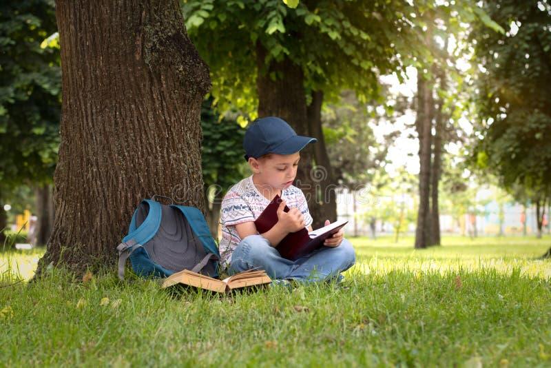 在公园读书的男孩 免版税库存图片