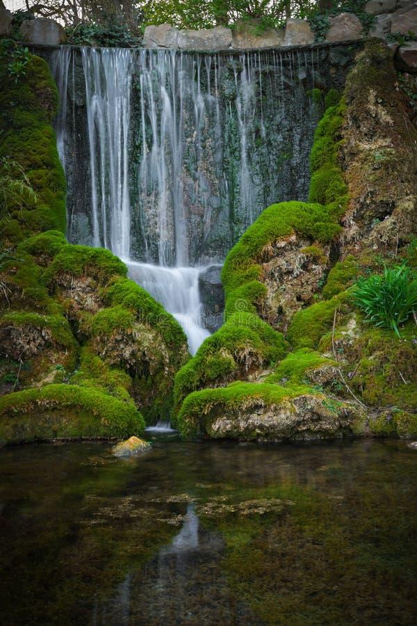 在公园长的曝光的美丽的瀑布 库存图片