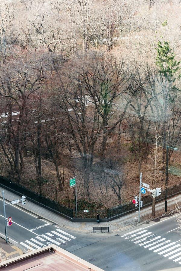 在公园附近的路有树的看法从上面早晨在札幌在北海道,日本 免版税库存图片