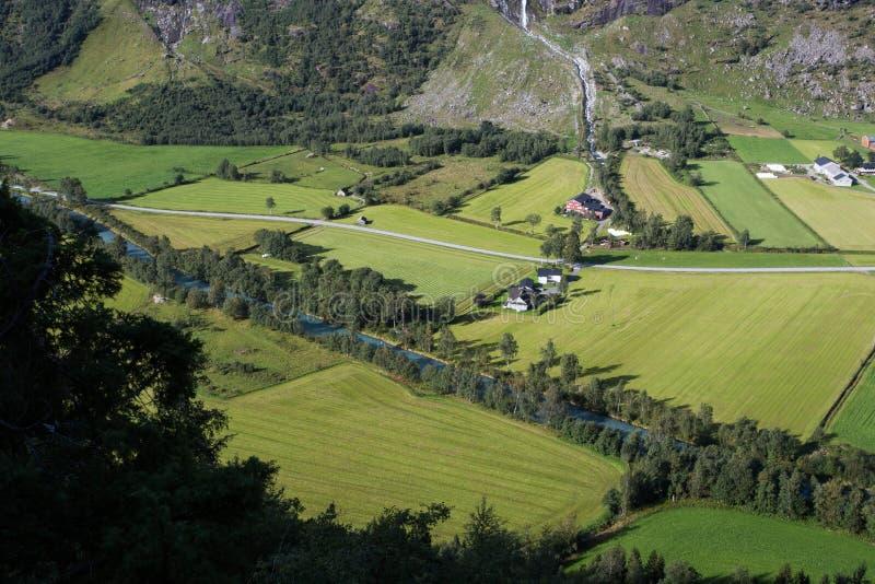 在公园领域绿色上的阿里埃勒寄生虫在住宅区 库存照片