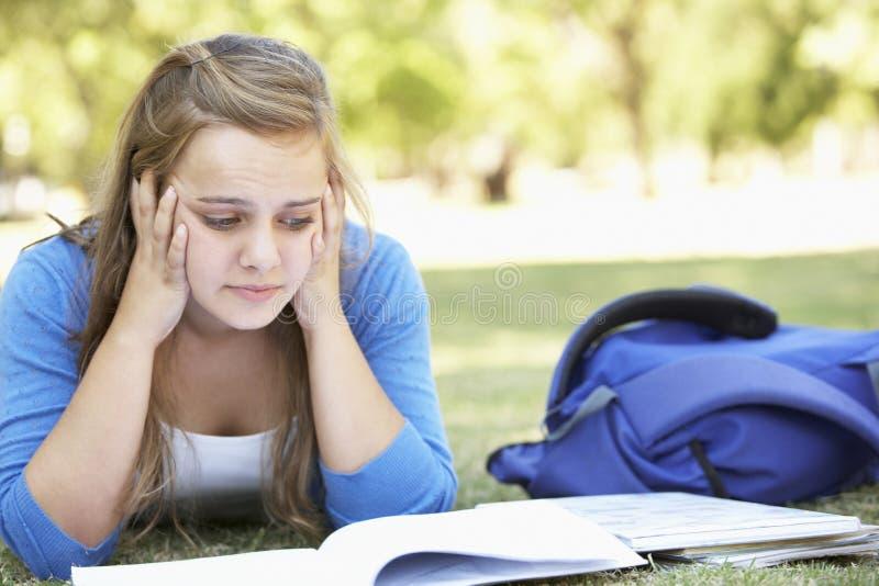 在公园读书课本的女性大学生 免版税库存图片