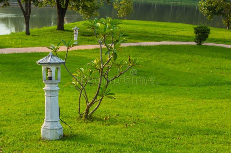 在具体杆的电灯泡在草坪 库存图片