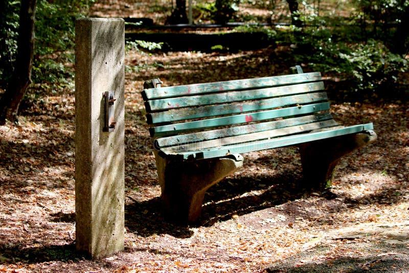 在具体码头旁边的大量使用的老残破的木公开长凳在树树荫下围拢与落叶和森林 图库摄影