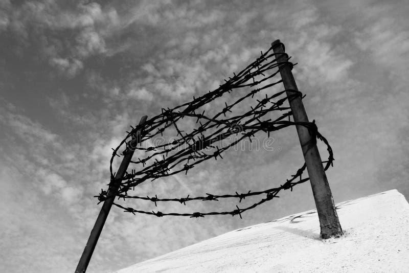 在具体篱芭的铁丝网 囚禁和驱逐出境概念 免版税库存照片