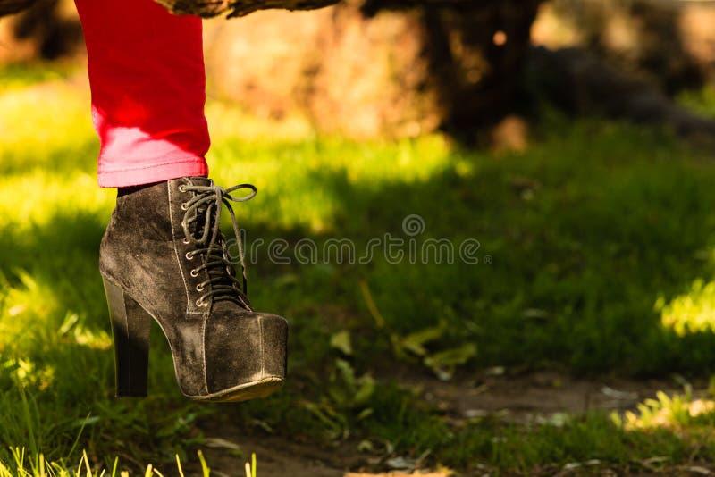 在典雅的黑鞋子的女性脚 库存图片