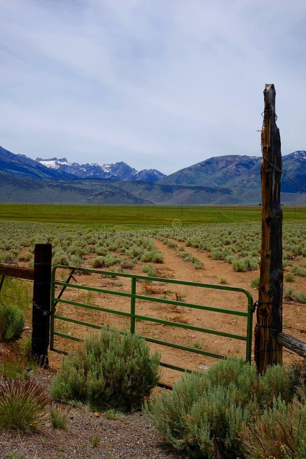在内华达山山的东边的大农场 免版税库存图片
