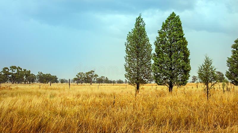 在内地在Dubbo澳大利亚 免版税库存图片