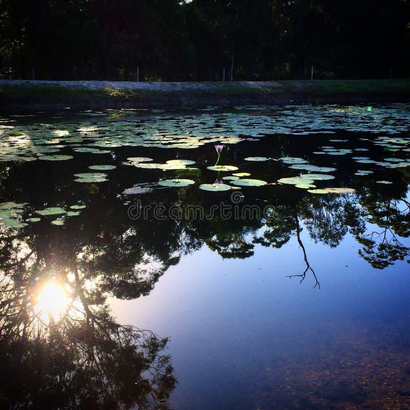 在内地湖 免版税库存照片