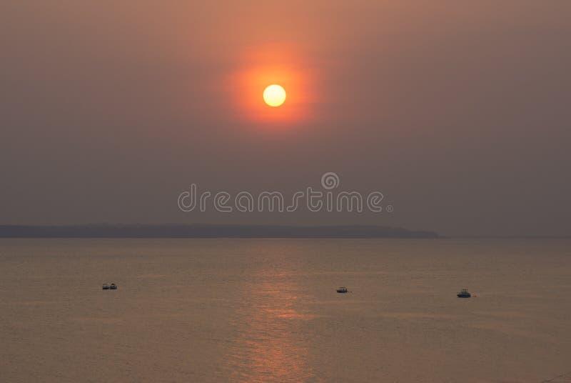 在内格罗河的日落在Amazonas 免版税库存图片