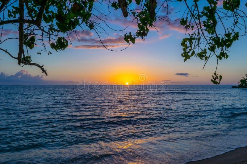 在内格里尔牙买加海滩的风景日落 田园诗浪漫热带加勒比岛设置 库存图片