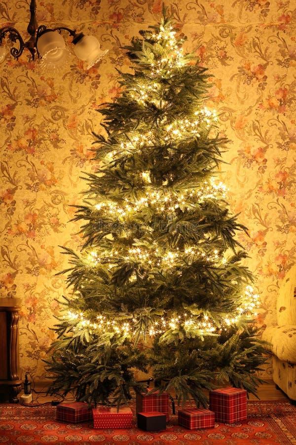 在内部的圣诞树 图库摄影