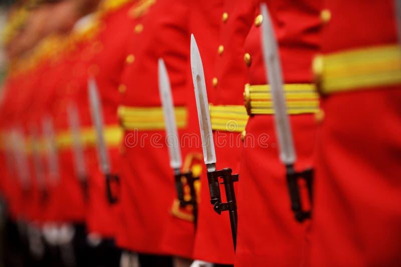 在军事游行期间的刺刀细节 库存图片