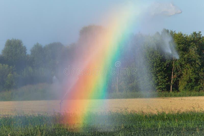 在农业的自动化的灌溉在与彩虹的夏天 库存照片