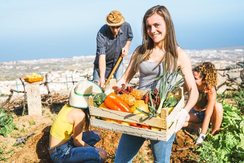 在农厂家的愉快的年轻女人的小组朋友拿着有新鲜蔬菜的果子条板箱在庭院里 免版税库存图片