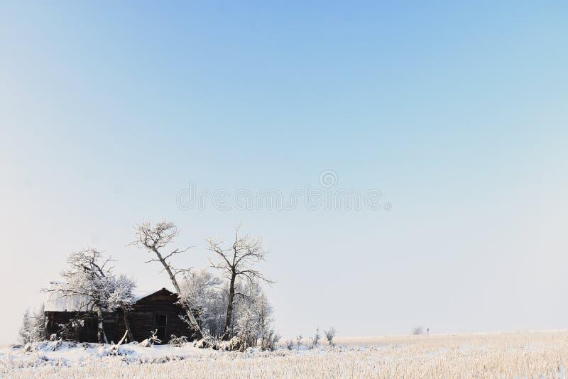 在农厂议院下的奔跑在冬天 库存图片