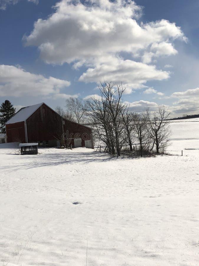在农场的一多雪的天 库存图片