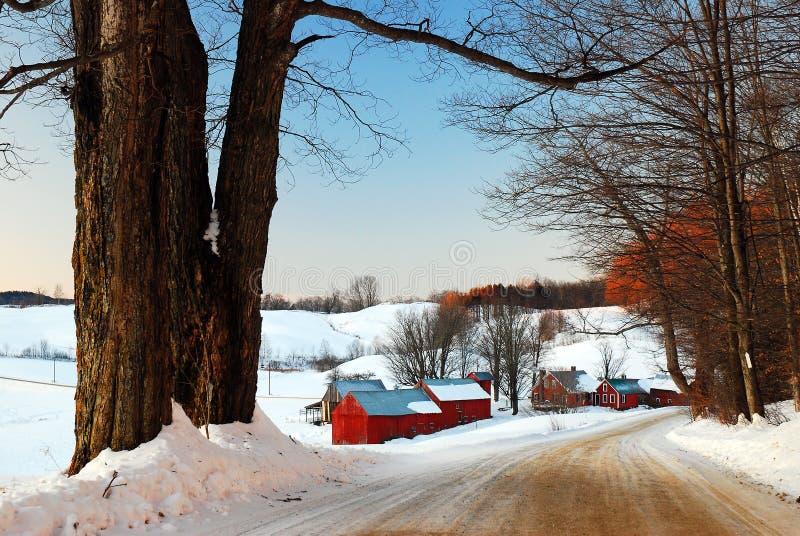 在农场的冬天 图库摄影