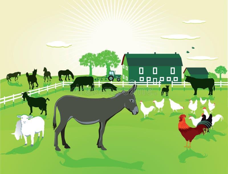 在农场的动物 库存例证