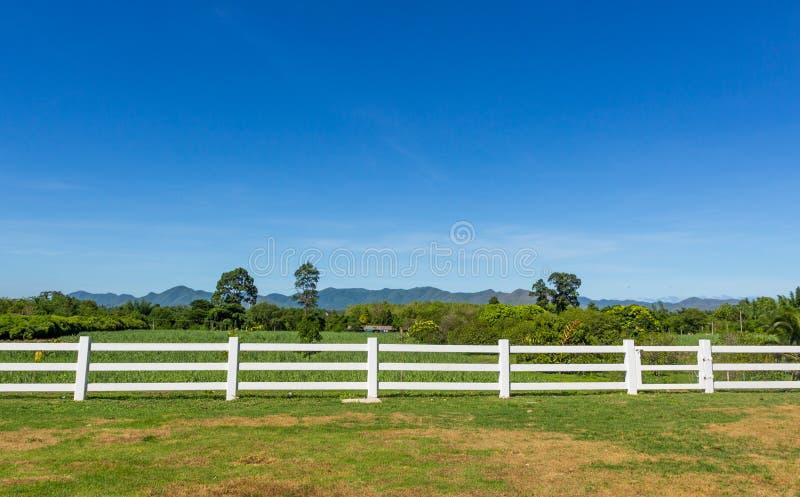 在农场的篱芭 图库摄影